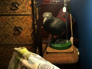 Black Plastic Crow For Decoration